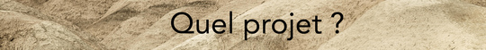 Quel_projet-1504172444