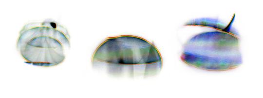 Rebersespectres_copie-1504177067