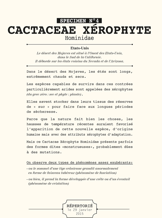 Zoom_cactacae_x_rphyte_esp_ce_en_voie_d_apparition-1504305187