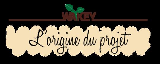Bandeau_origine_du_projet-01-1504613602