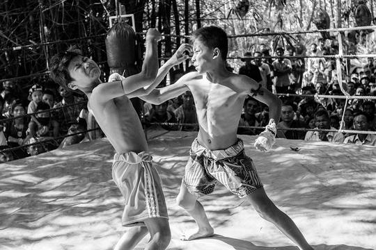 Fight-1504876243