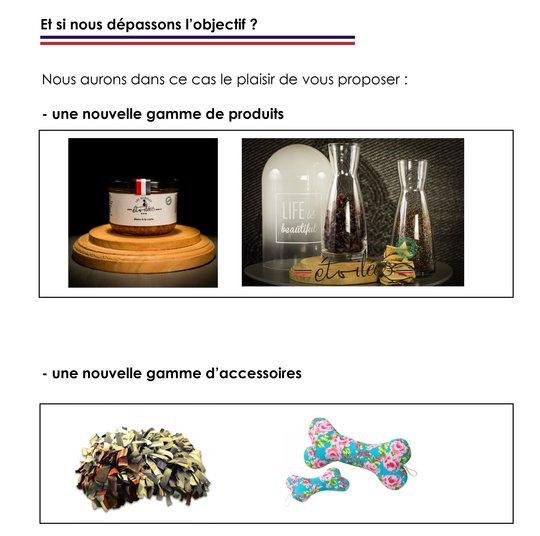 Etsinousdepassonslobjectif-1506329288