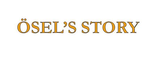 _sel_s_story-1507152811