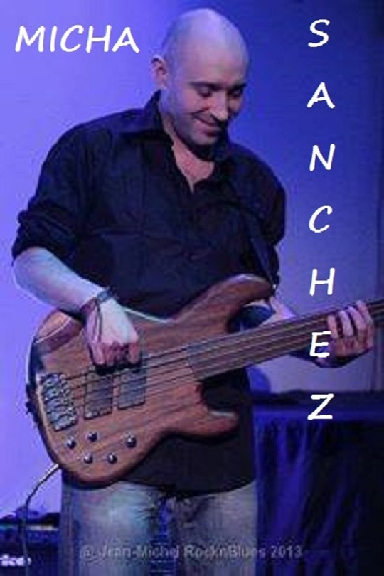 Micha_sanchez__basses_fretless_-1508856306