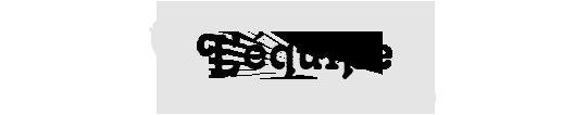 Equipe-braise-moi-manuel-de-cultures-queer-dans-la-pourquoi-1508877738