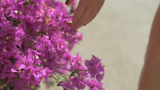 Mains_fleurs-1508914488
