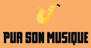 Logo_pur_son_01-1509037077