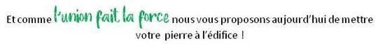 L_union_fait_la_force-1510003007