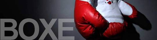 Us-chartrons-banner-page-boxe-jouer-1510171421