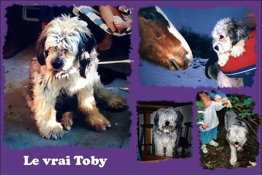 Tobybabillardbis-1510825671