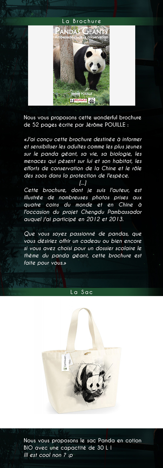Njilcrowdfounding_panda_brochure-1511623760
