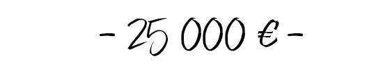 25000-1511821320