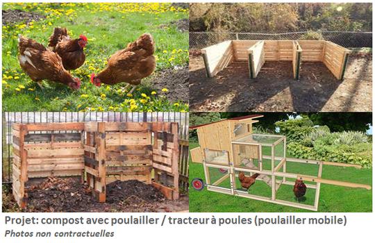 Poules_et_tracteurs-1512420227