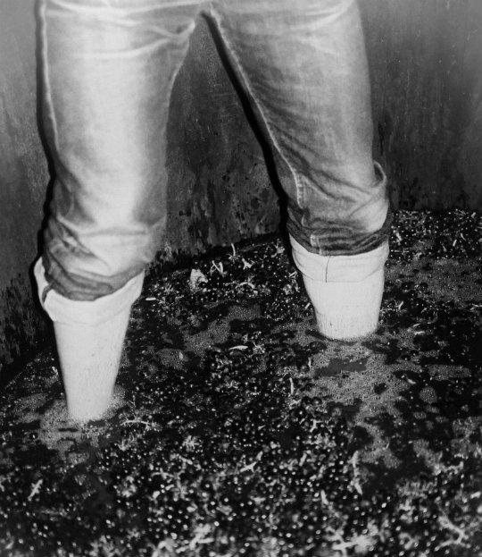 Les_pieds_dedans_1600x2400px-1512553505