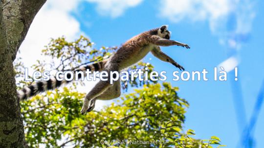Contreparties-1527092942