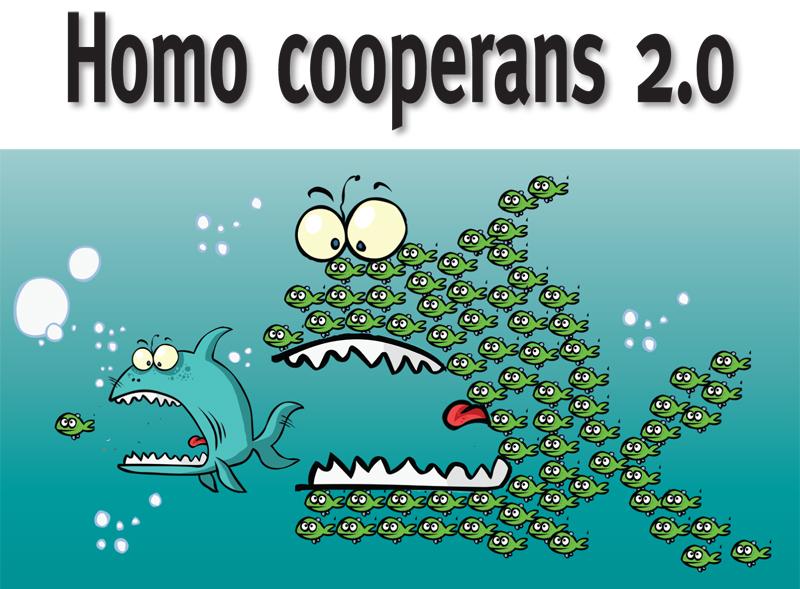 Bees-cover-homocooperans-1444139787.jpg
