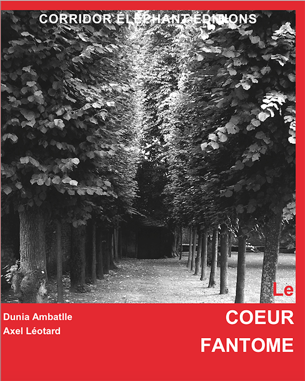COUV_COEUR_FANTOME_W-1445003855.png