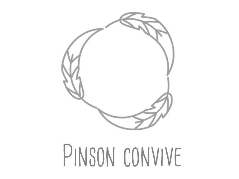 pinson-convive-1453972041.png