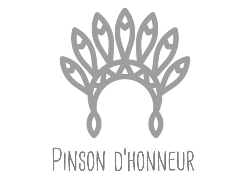 pinson-d_honneur-1453972054.jpg