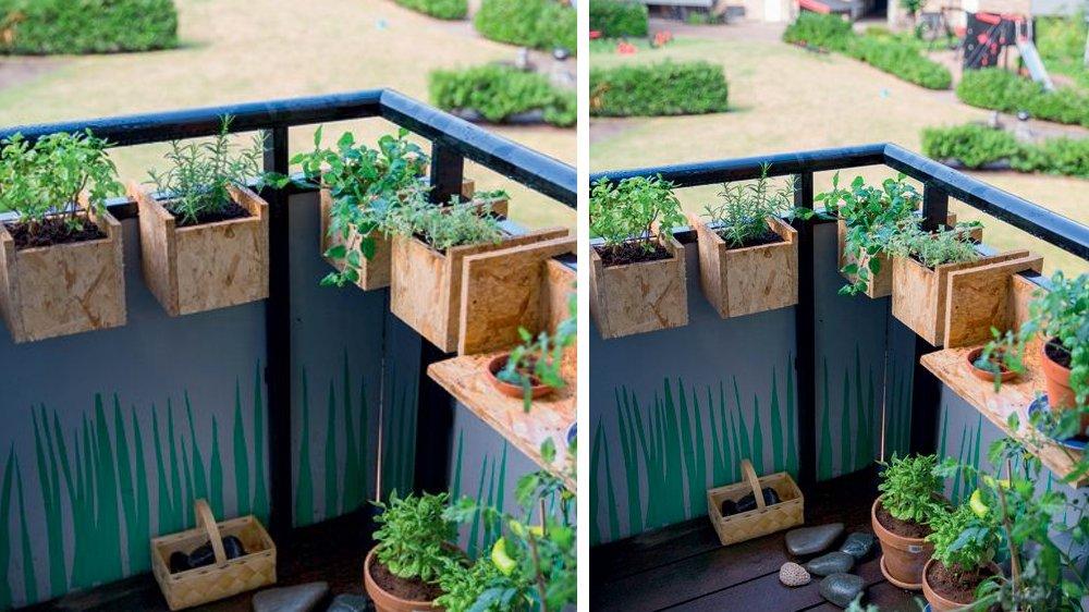 03E8000008042196-photo-jardiniere-balcon-osb-1454064430.jpg