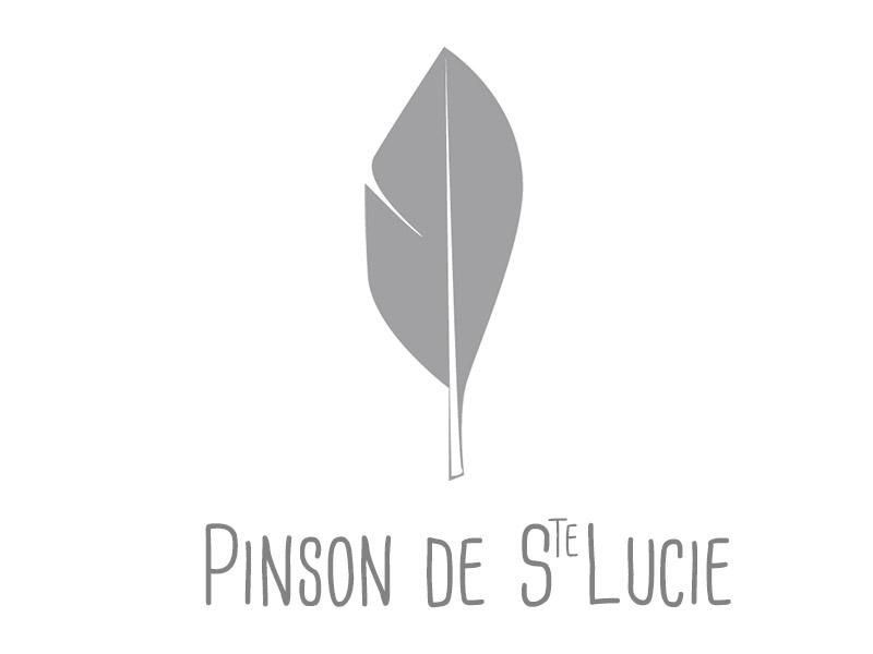 Pinson_de_Ste_Lucie-1454085219.jpg