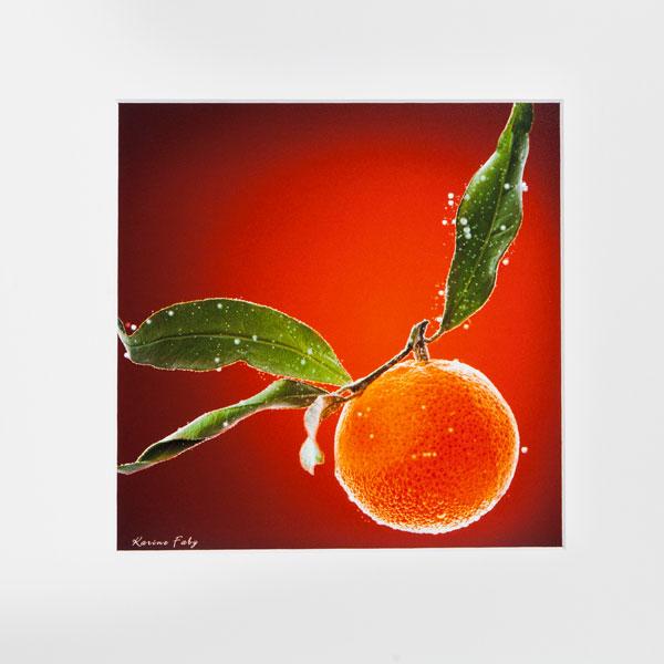 clementine_web-1455817737.jpg