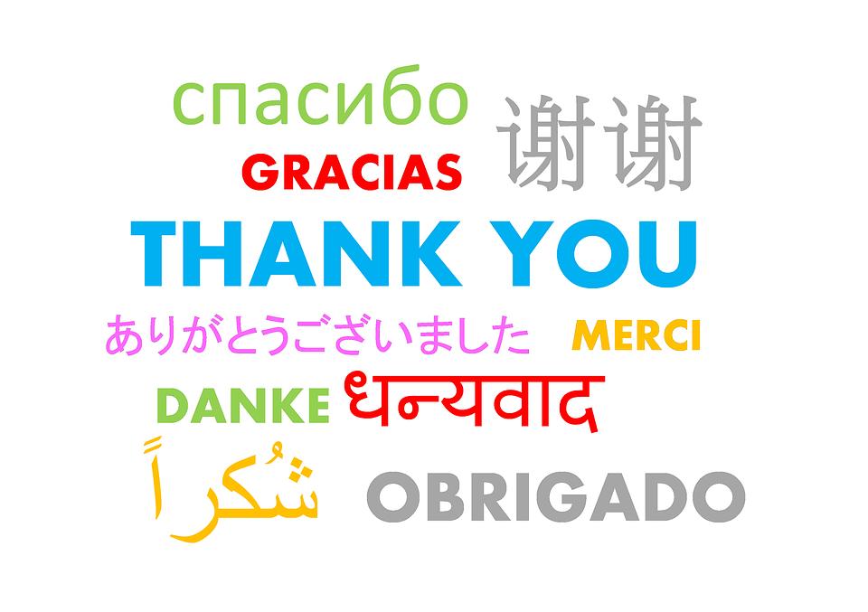 Merci-1457511649.png