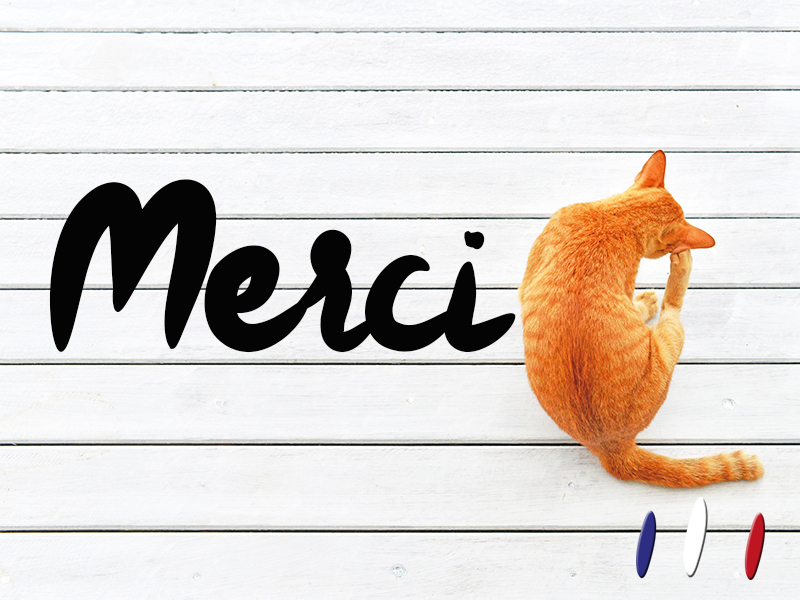 MERCI_CONTREPARTIE-1459423870.jpg