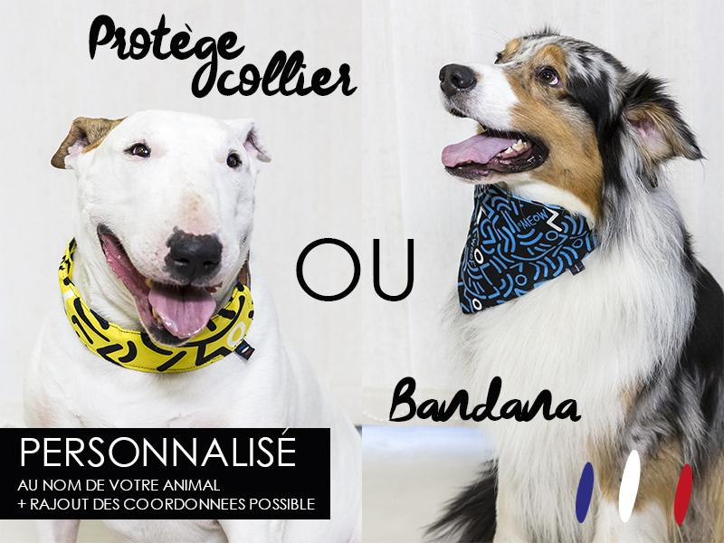 BANDANA_COLLIER_PERSONNALISABLE_CONTREPARTIE-1459427902.jpg