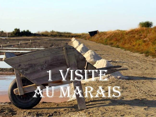 marais-brouette-1462111088.jpg