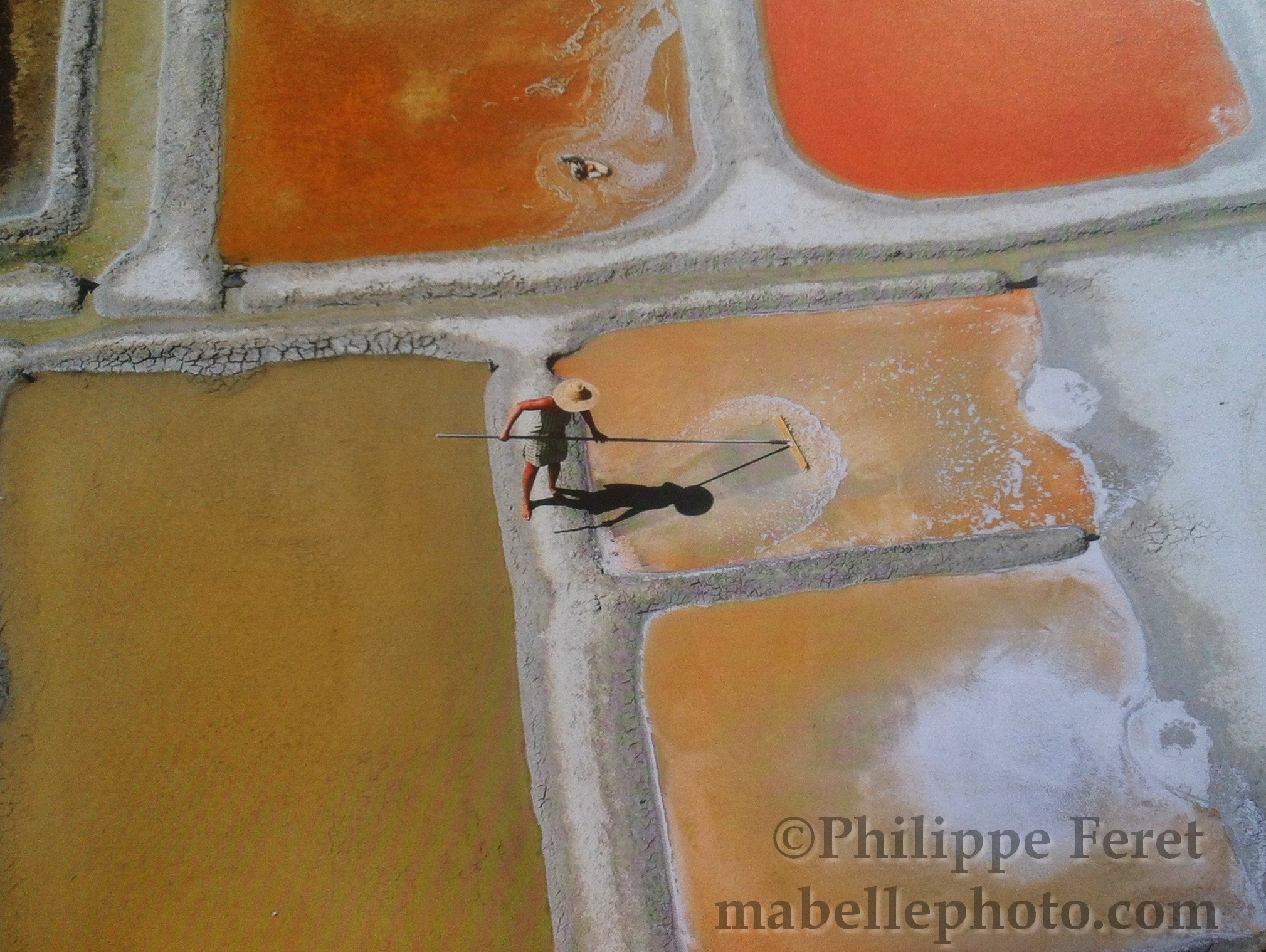 carte-postale-sauniere-michele-marais-ile-de-re-1462733177.JPG