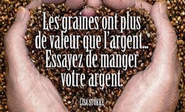 graine_laurent-1463570773.jpg