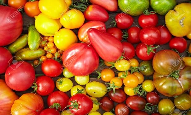tomates_l1-1463571059.jpg