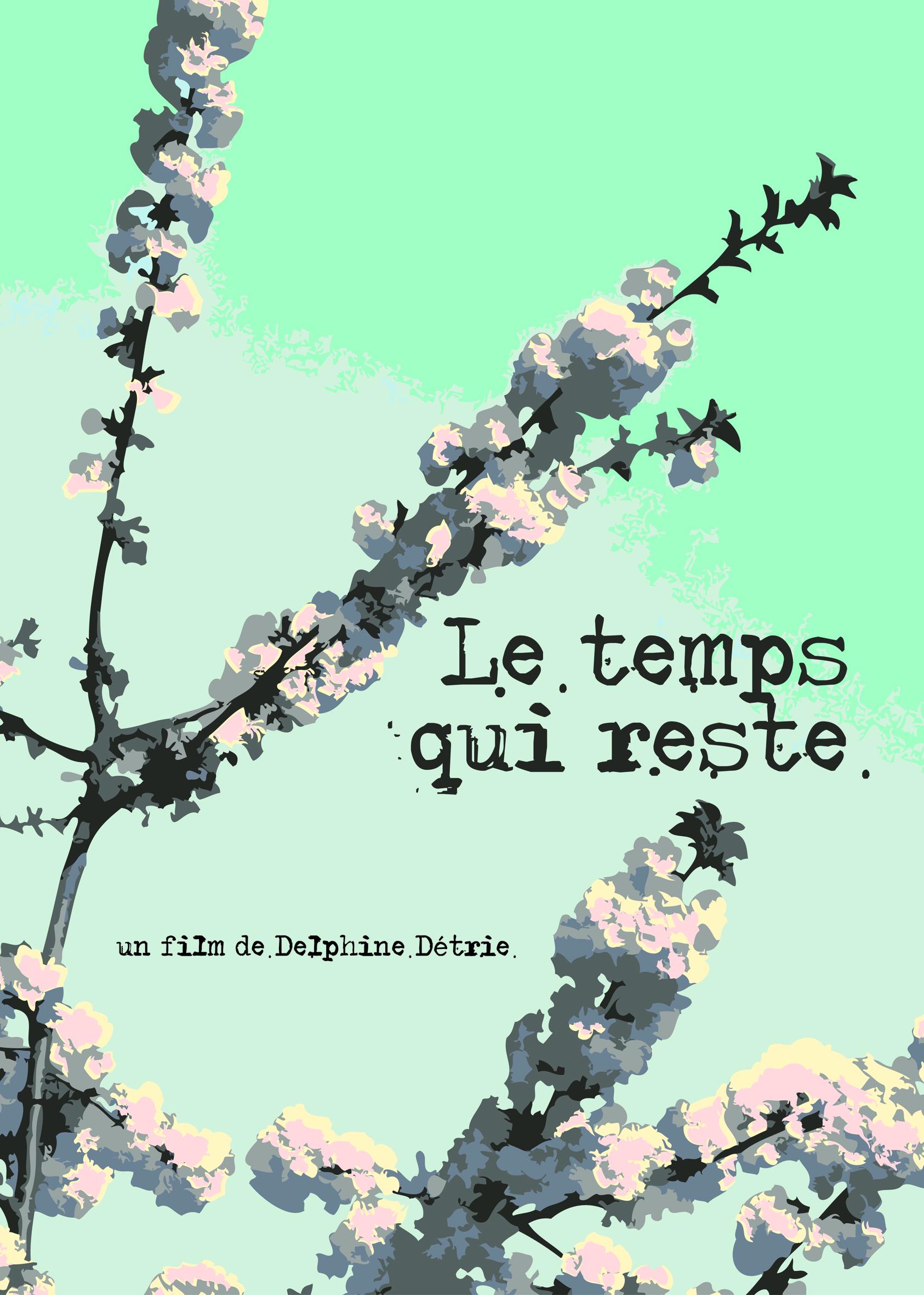 le_temps_qui_reste_affiche_A3_-_copie-1463647975.jpg