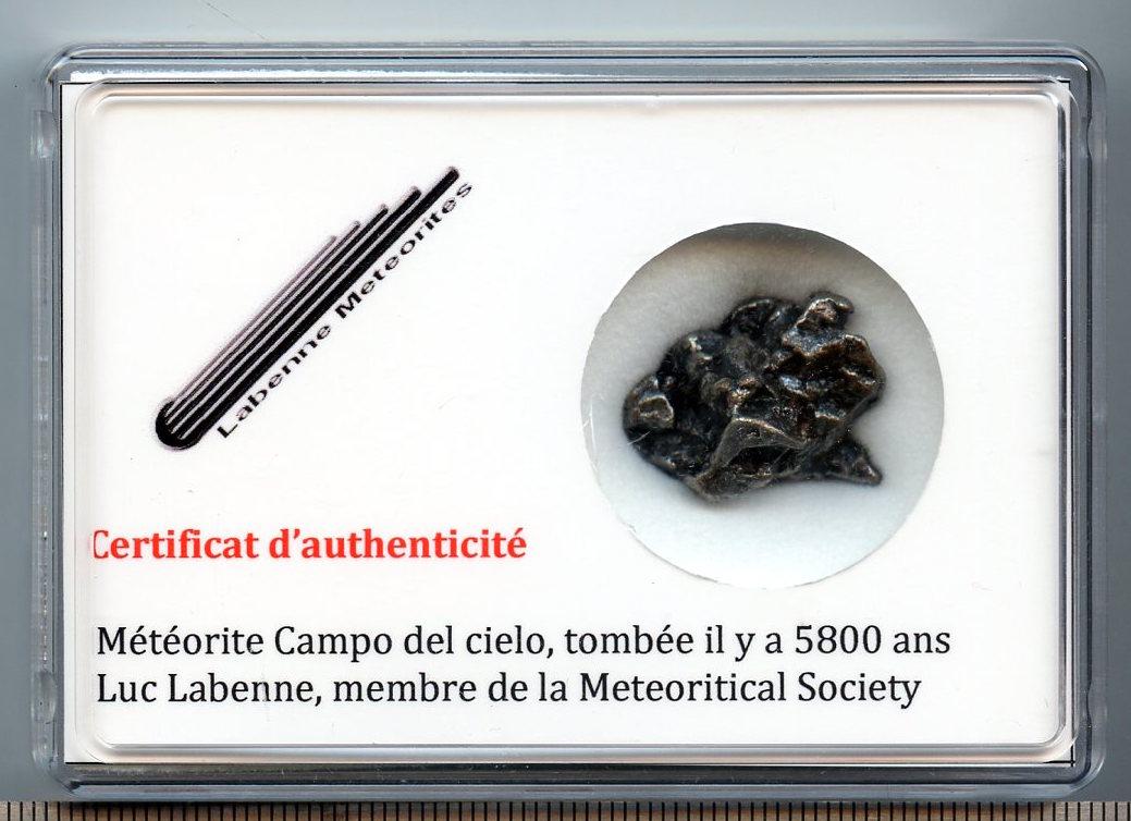 Campo_Sylvain_10_a_15_g_20_mm-1464021756.jpg