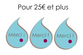 projet_crowdfunding_merci_25-1464774505.png