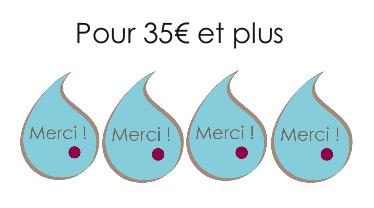 projet_crowdfunding_merci_35-1464774527.png