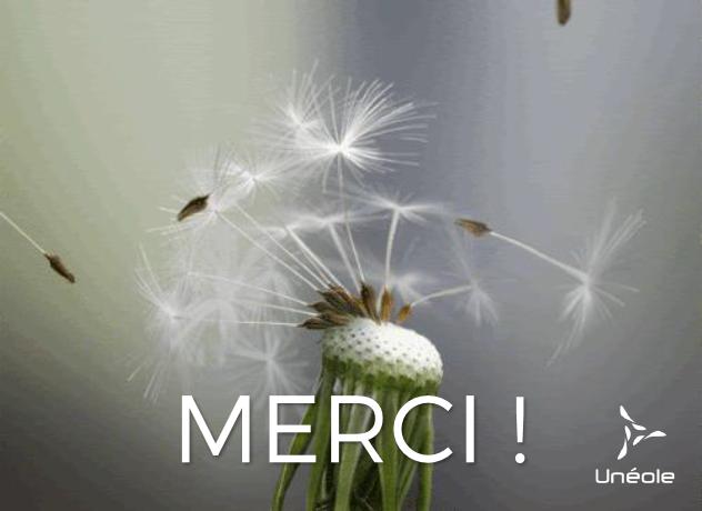 Merci-1465214387.png
