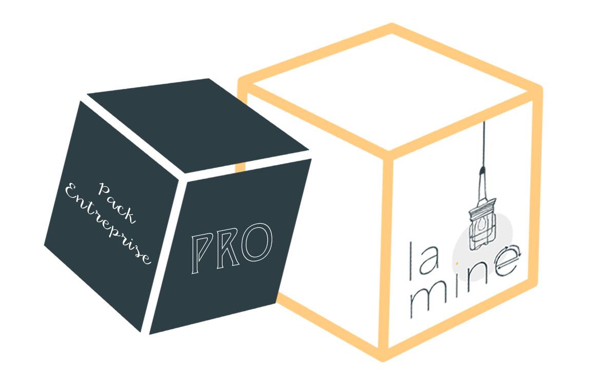 Pack_Pro-1466089055.jpg