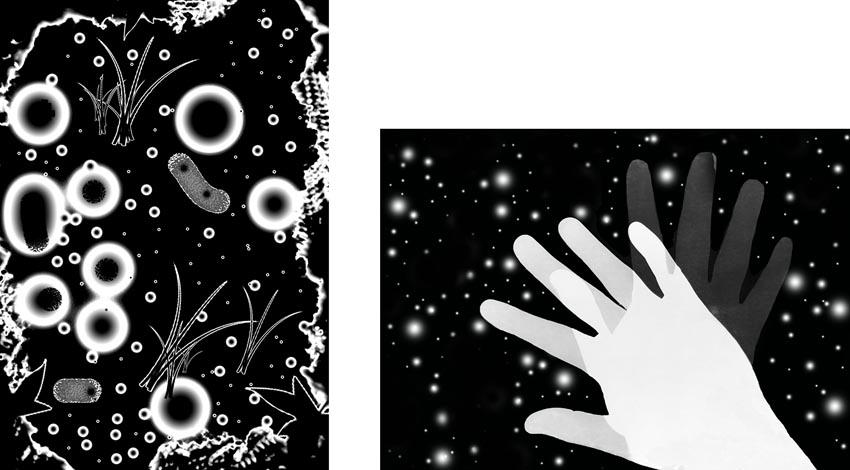 sciences-fictions_sandrine-elberg05-1467197040.jpg