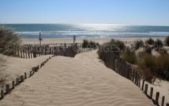 Plage_Montpellier-1467567414.PNG