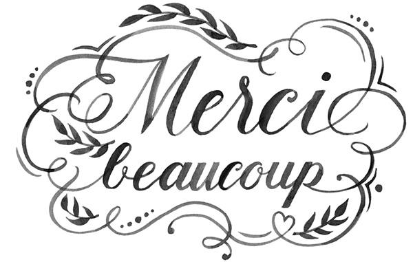 merci_beaucoup-1475079378.jpg