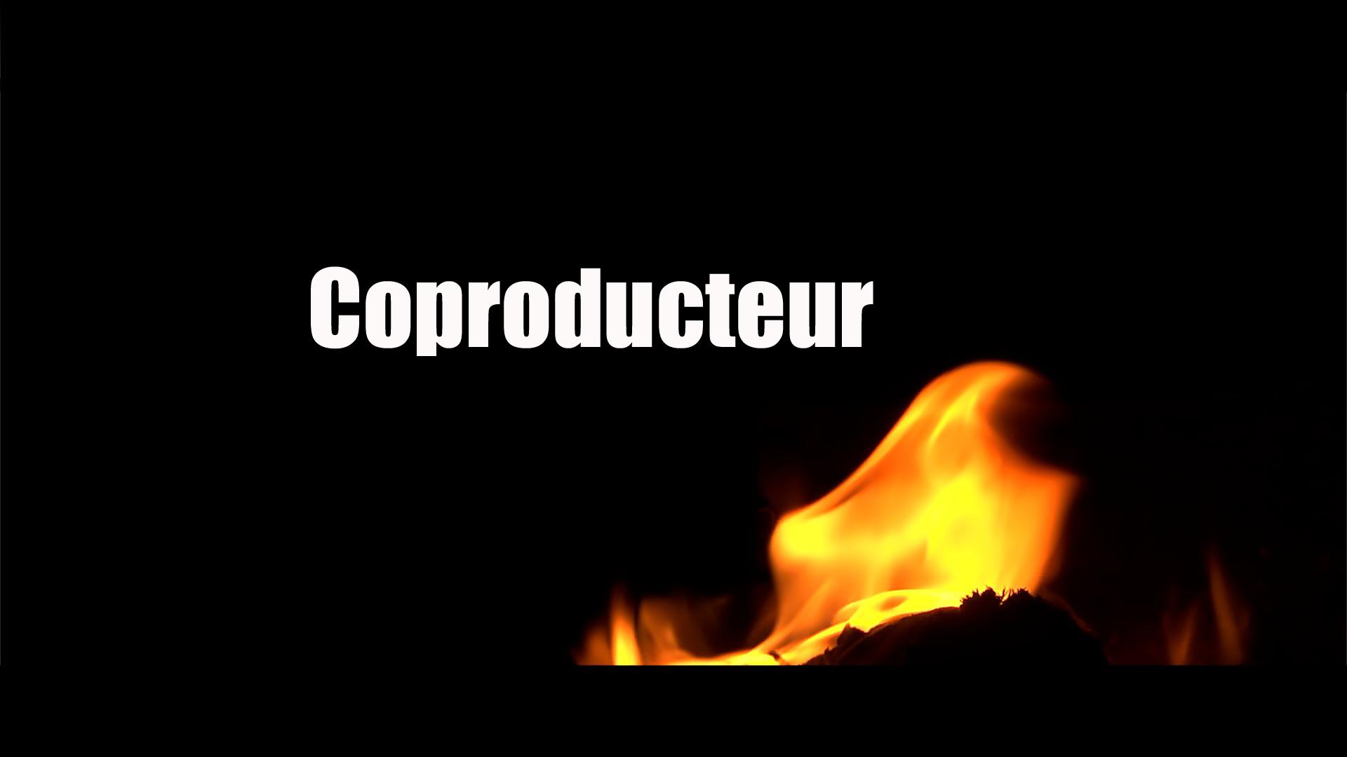 feu11_Coproducteur-1479491481.JPG