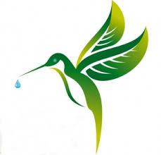 colibri-1484009489.jpg