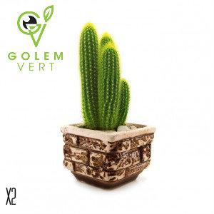 sticker-cactus-en-potdd-1488401488.jpg