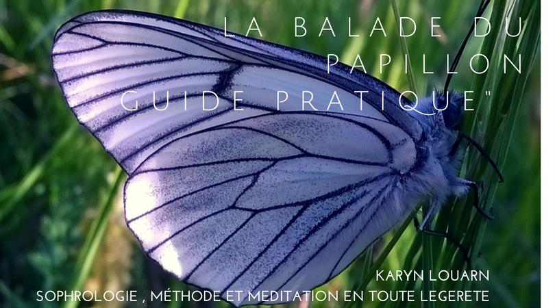 FB_balade_du_papilon-1490306053.png