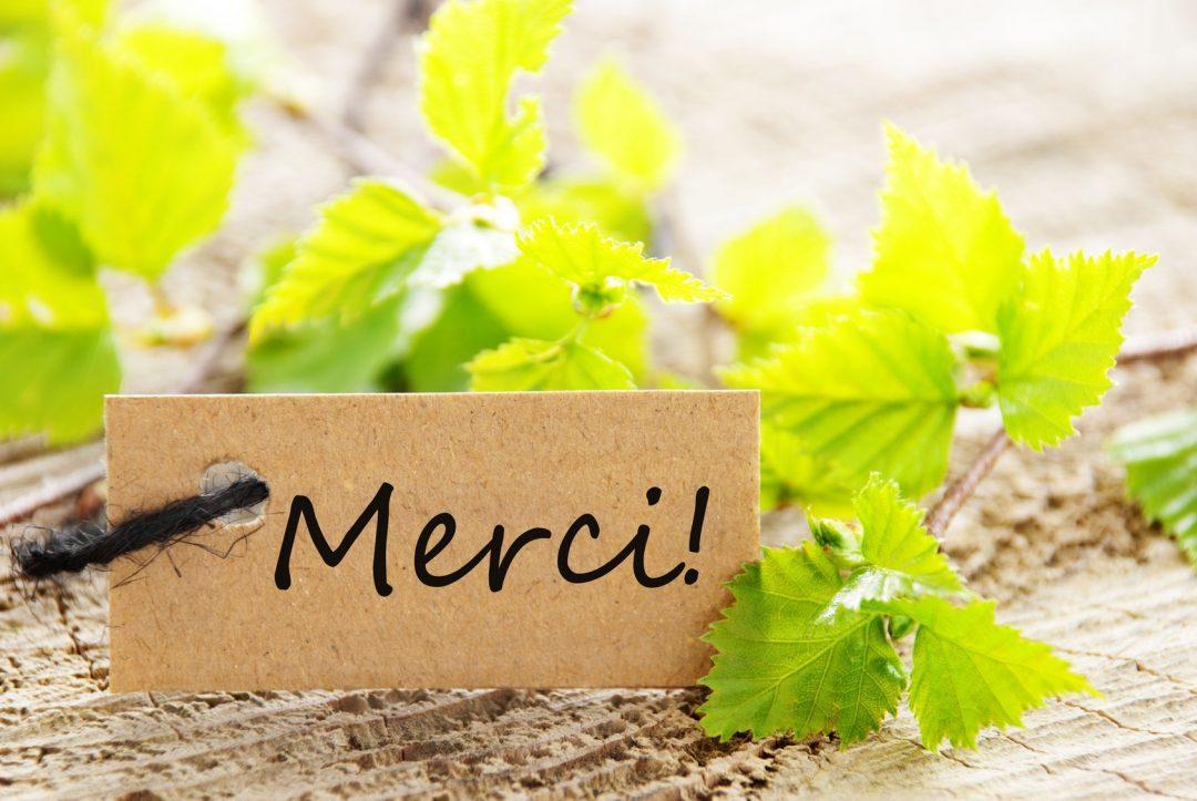 vos-ingredients-du-bonheur-la-gratitude-merci-1492533646.jpg