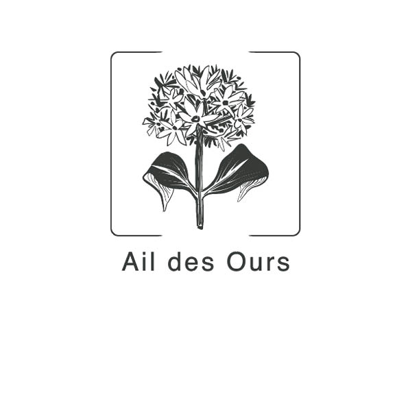Ail_des_ours-1492762165.jpg