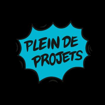 Plein_de_projets-1493298607.png