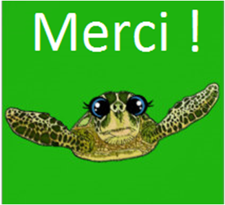 carte_tortue_finale-1493630320.png